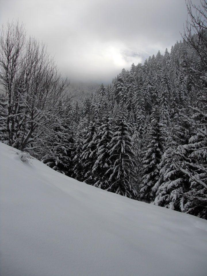 Un vrai hiver…