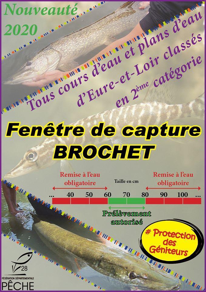 La réglementation Carnassiers change en 2020 dans l'Eure-et-Loir !