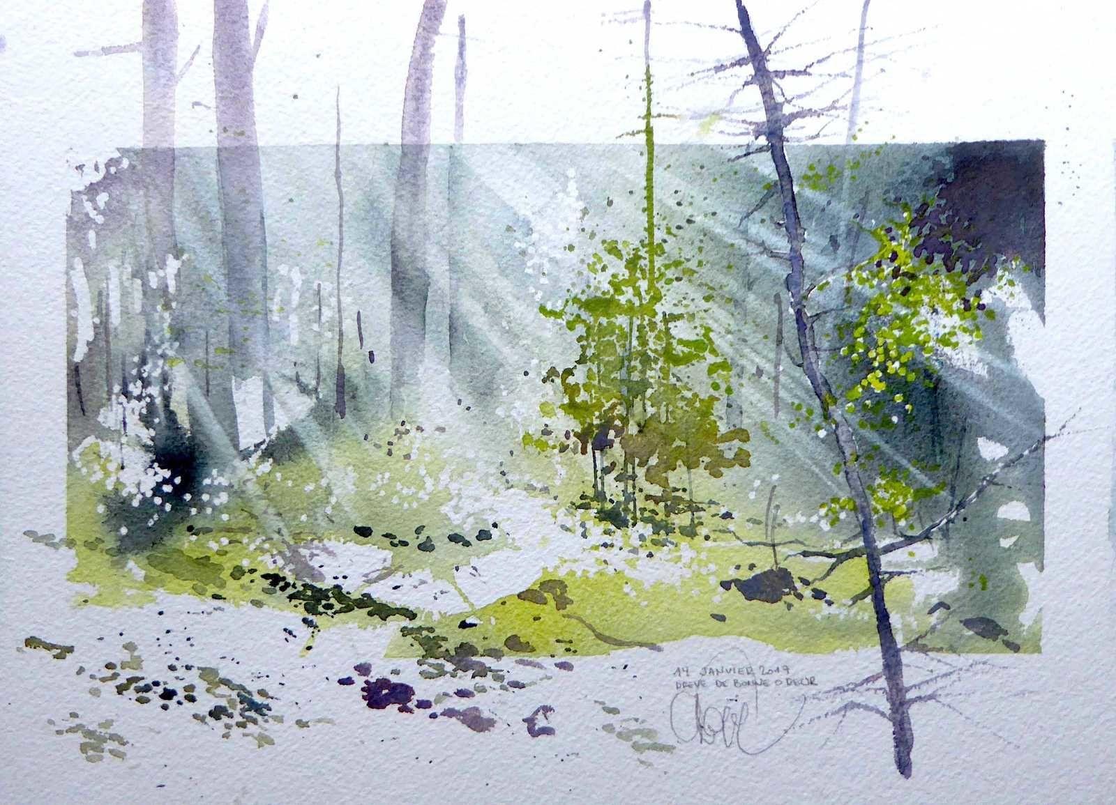 aquarelles blockx sur papier arches 640 gr/m2, grain fin, 36 cm x 26 cm