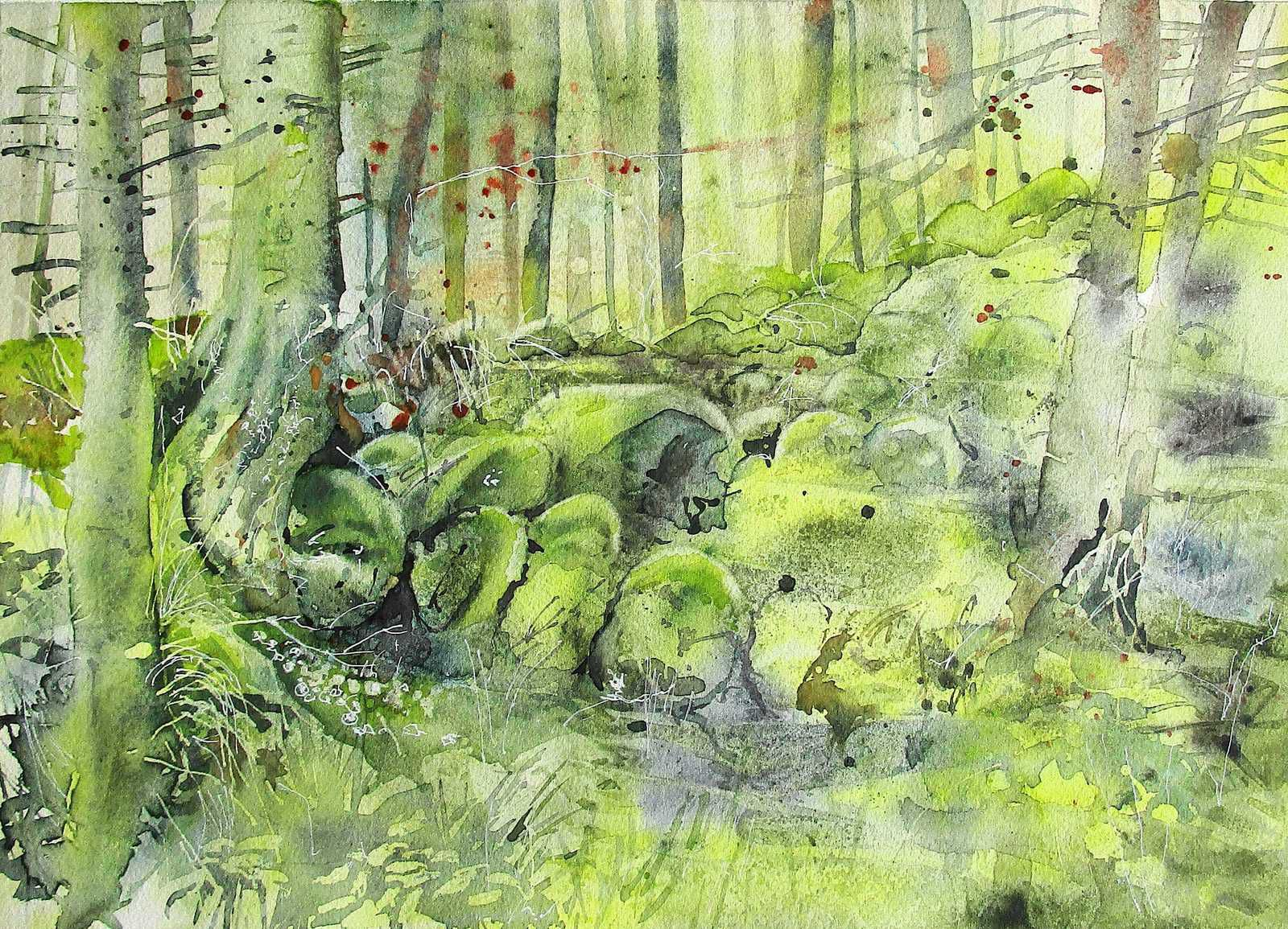 Paysage forestier.