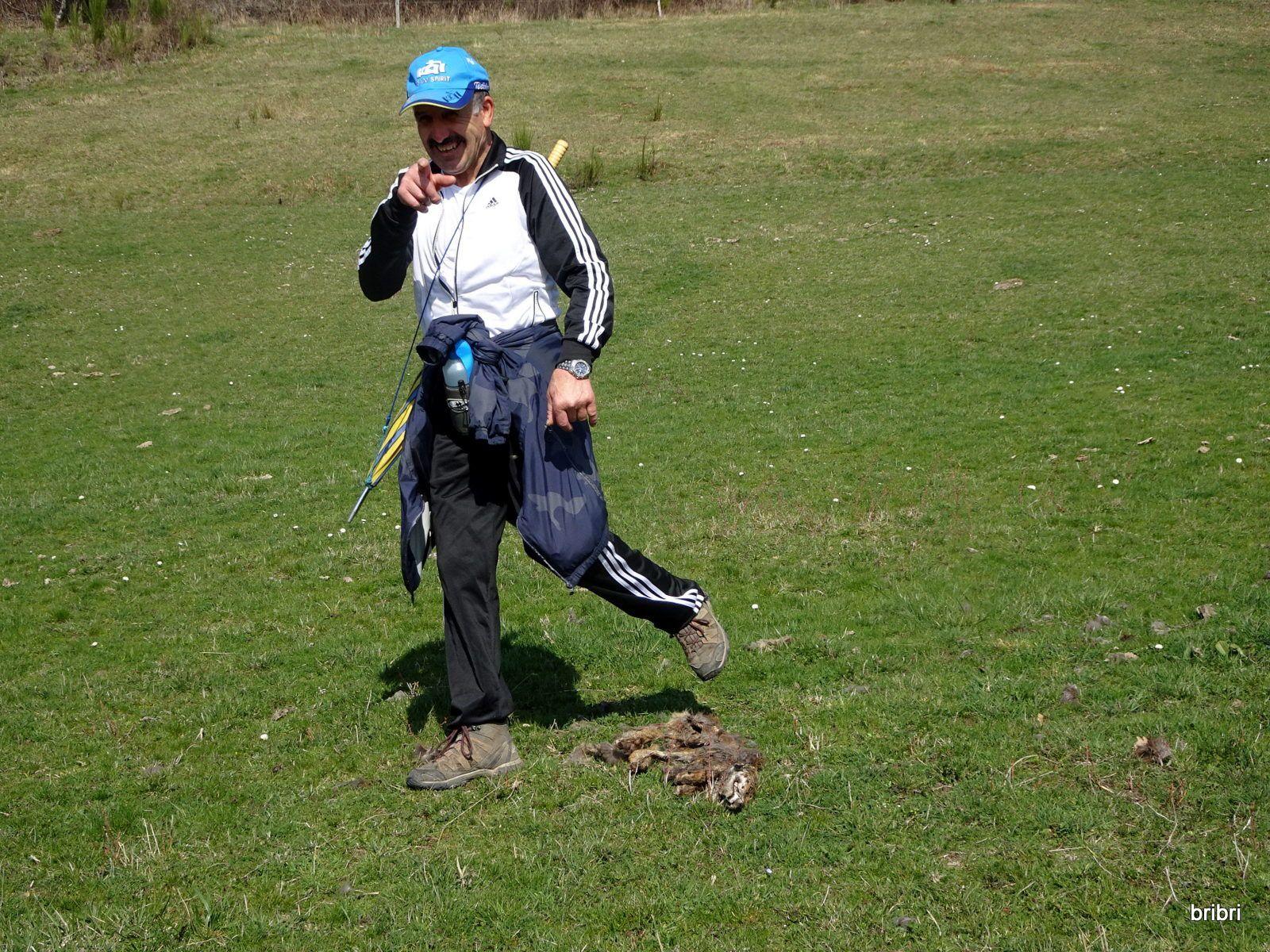 José trouve ce renard crevé, on en profite pour faire une petite pause. En repartant Jacline avait encore oublié ses bâtons, heureusement Denis veillait et les avait ramassé, (il sera sûrement récompensé !).