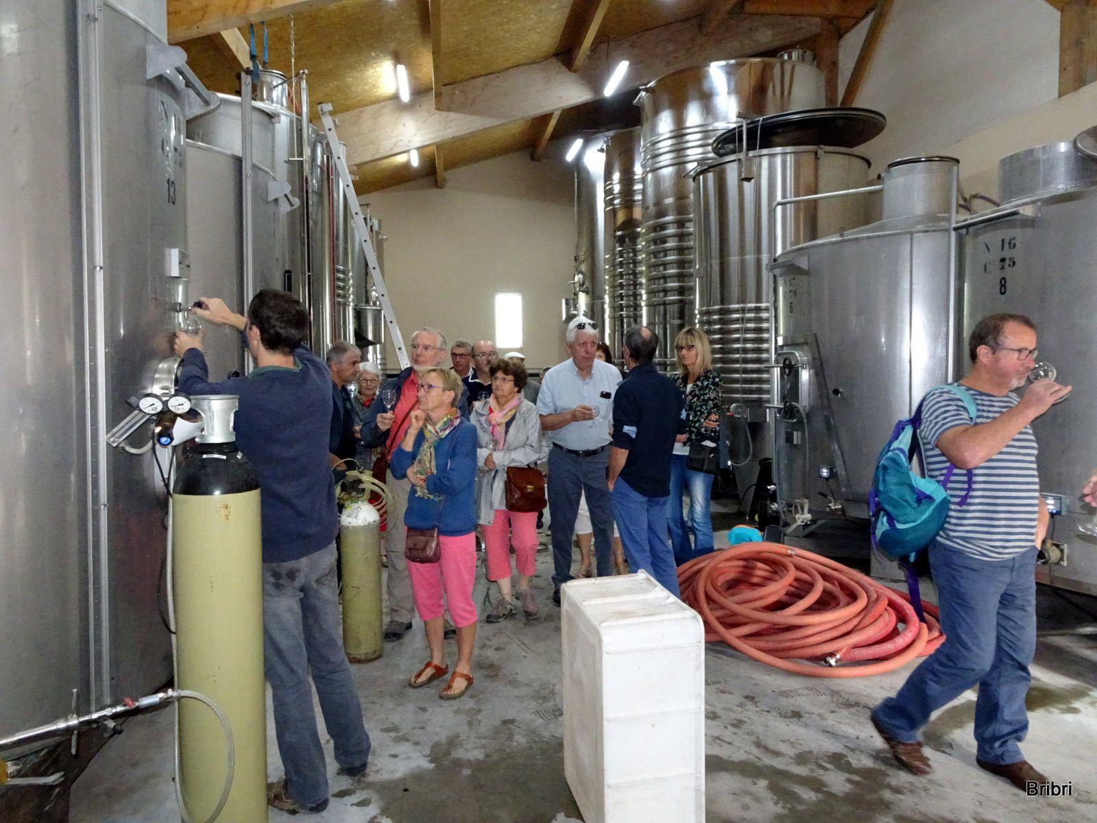 Visite avec dégustation des vins en fermentation puis passage à la cave pour une nouvelle dégustation et faire quelques achats. Ici pas de déception. Ensuite nous allons faire le marché provençal et achetons des fruits pour le dessert.