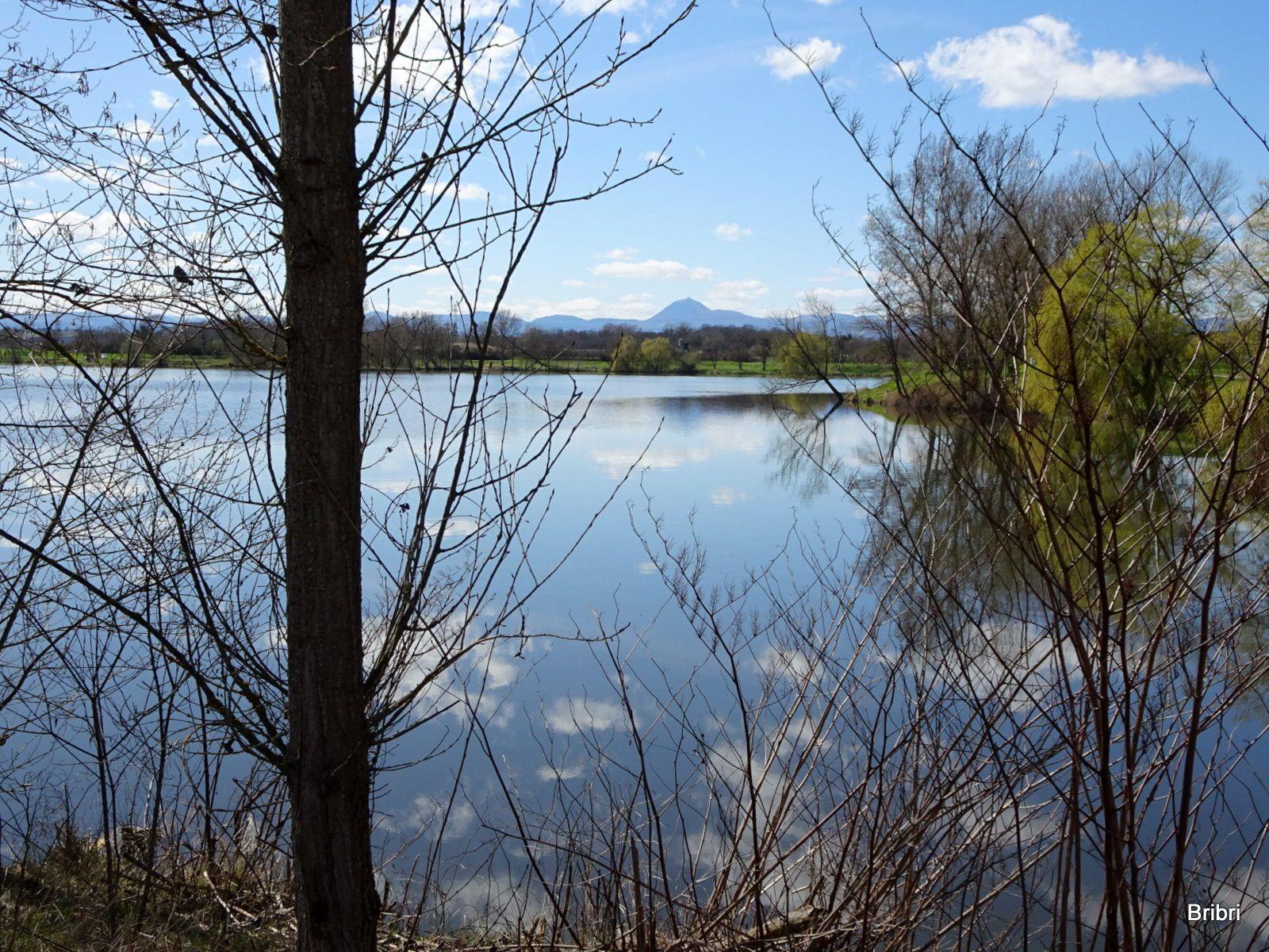 Nous reprenons notre chemin et arrivons à l'étang pour en faire le tour. Des canards heureux et le géant au loin.