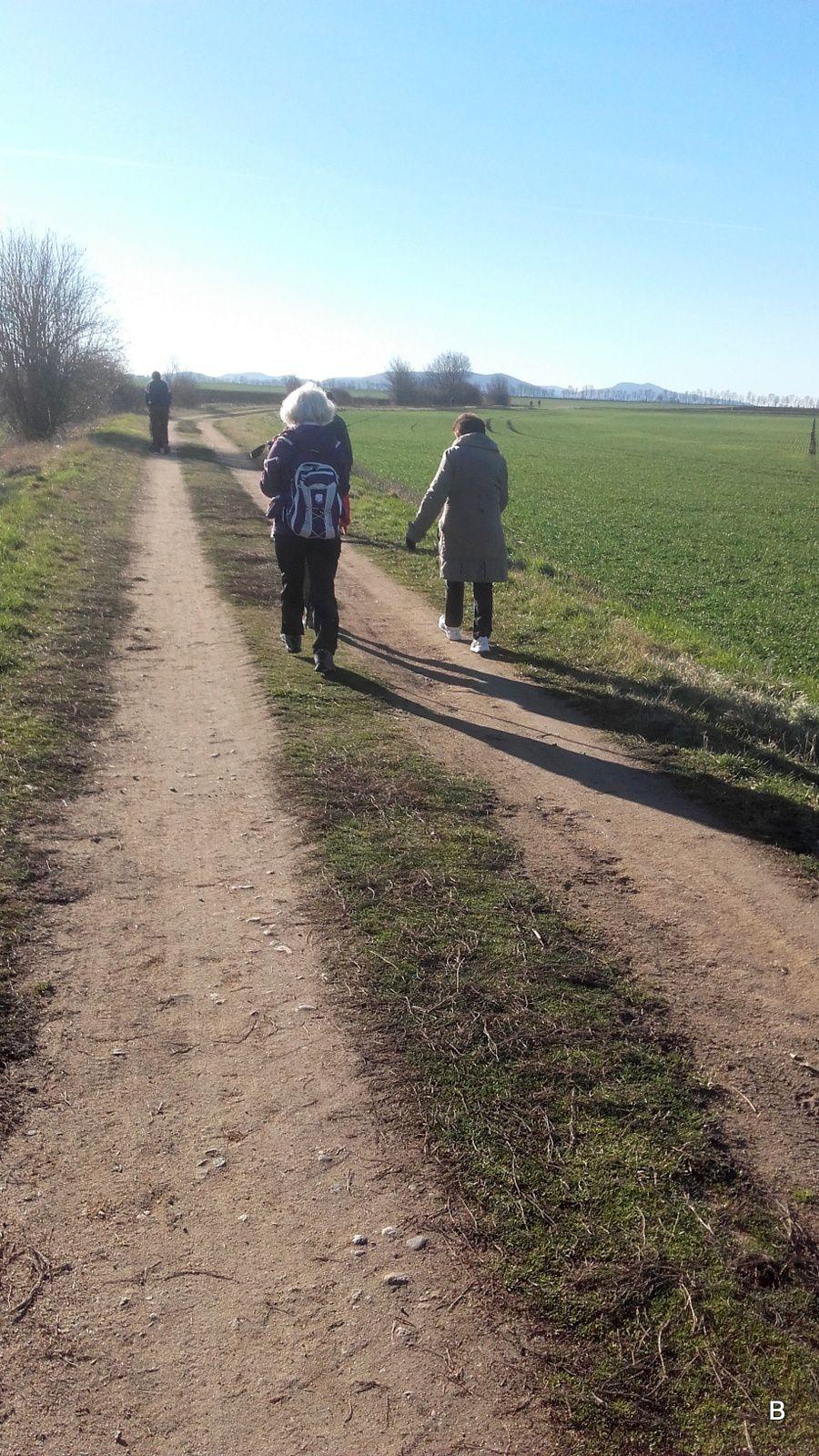 En limagne il fait un temps superbe, face au Puy-de-Dôme, Nanou en profite pour courir.
