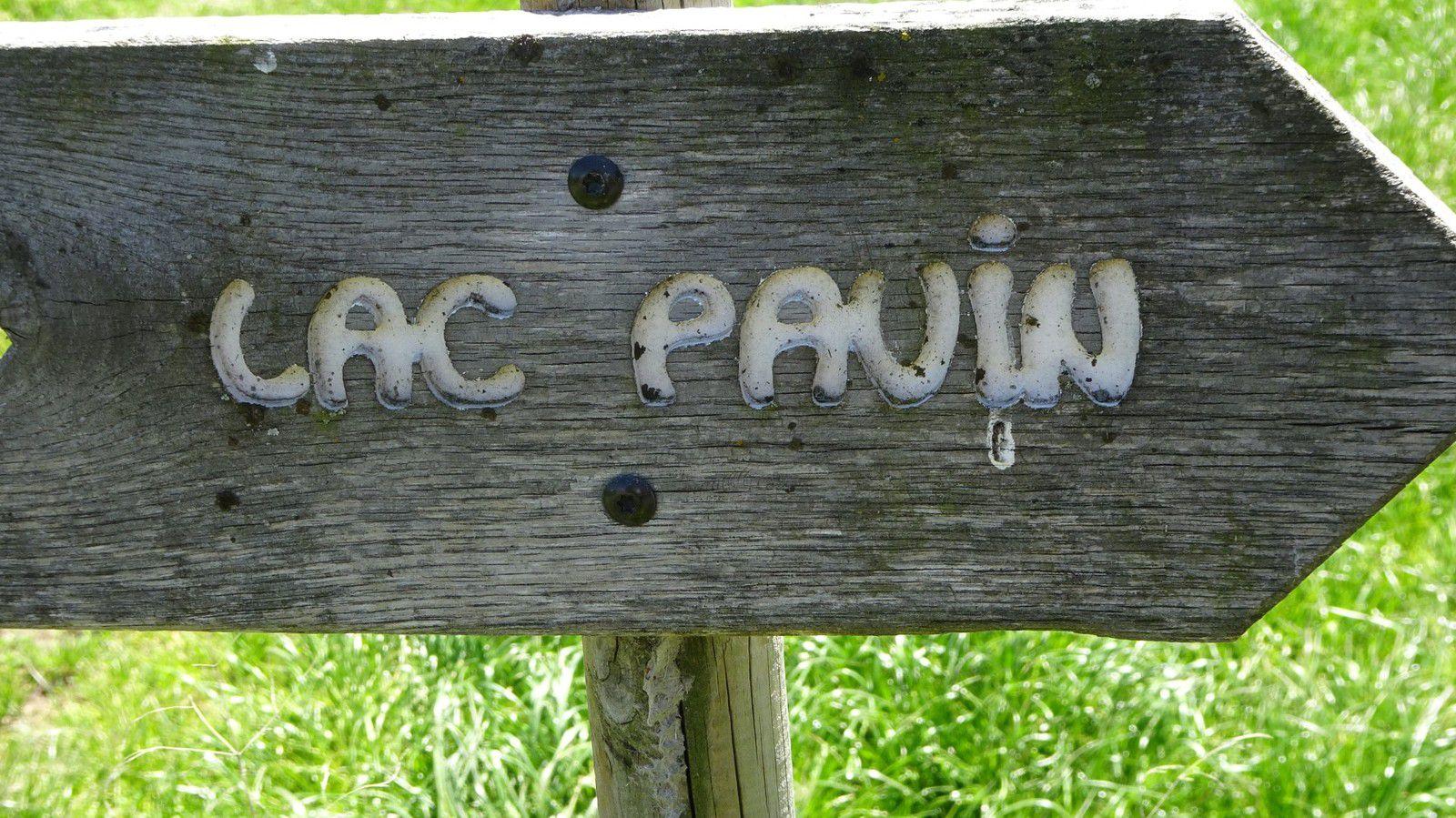 Rando au Pavin entre amis(es).