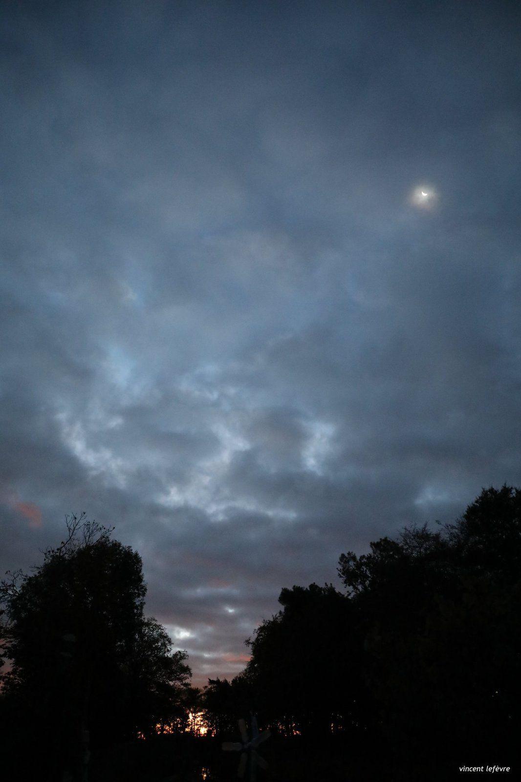 Depuis le début, Soleil et Lune, 1 ballet à observer pour qui le veut !