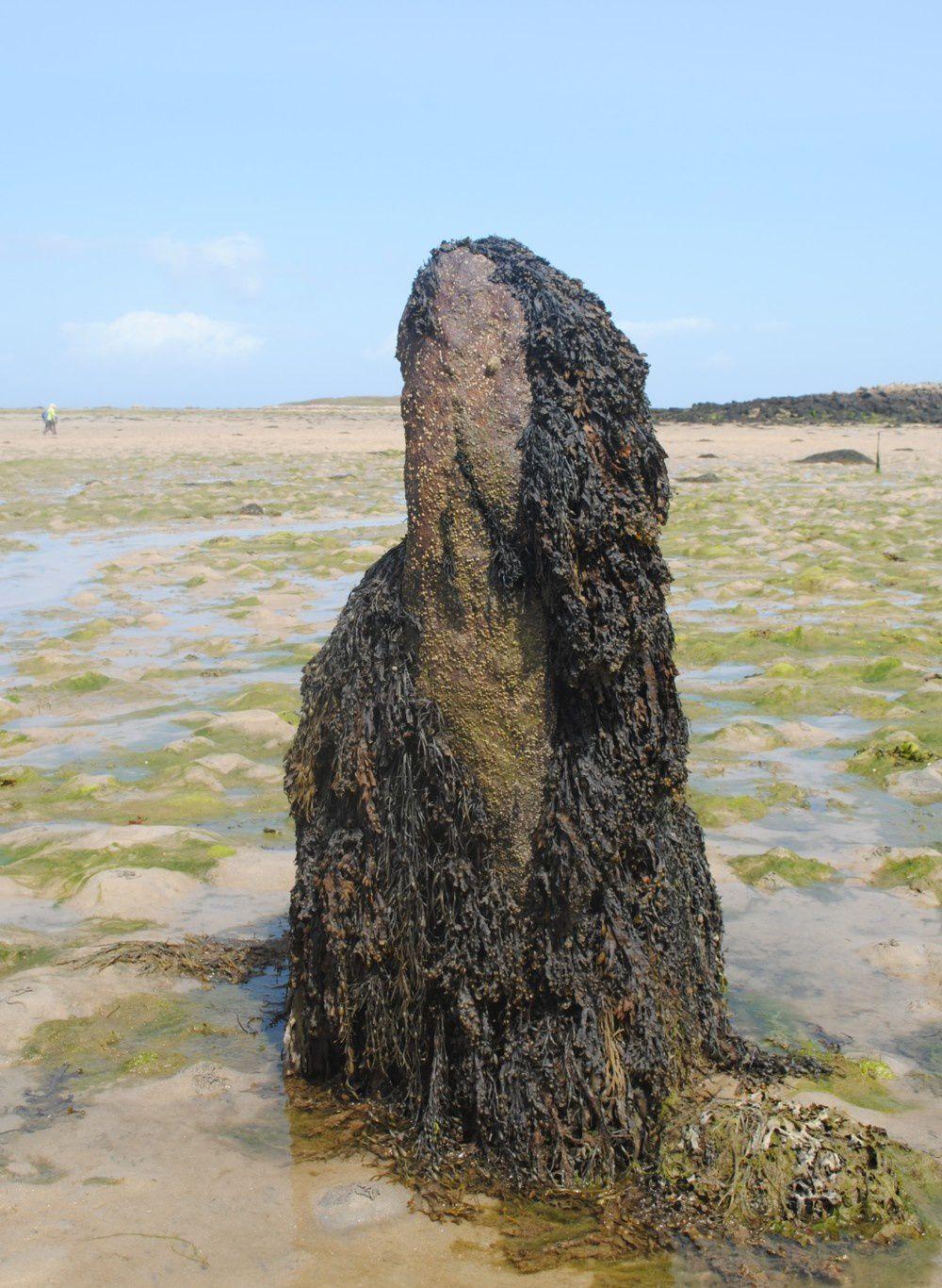 Le menhir de la grève de l'île Wrac'h