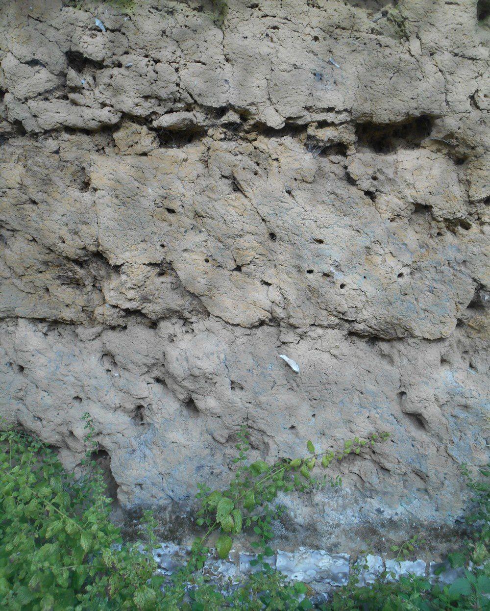 Mur en torchis au manoir du Fay - Yvetôt - 76