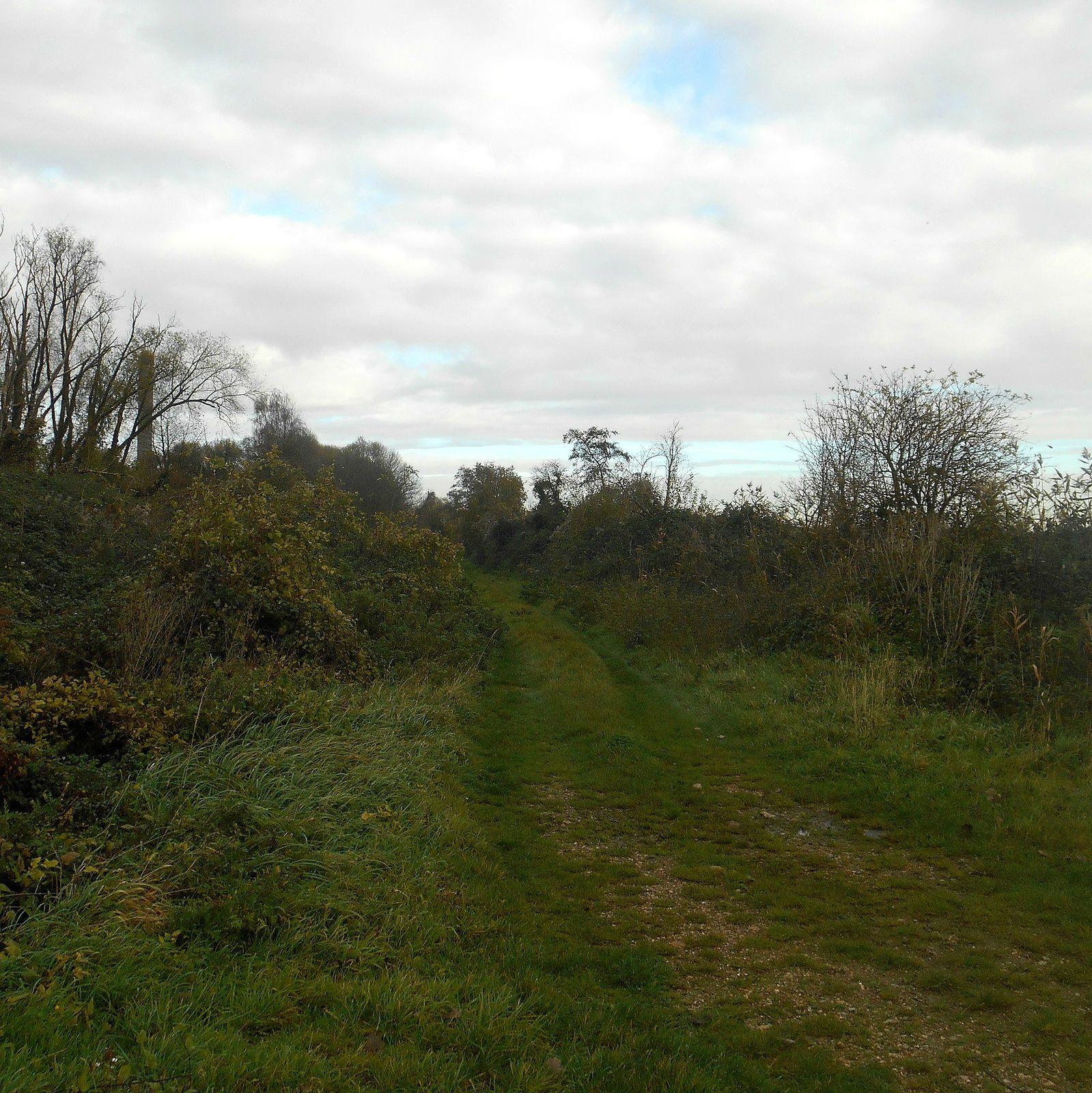 limite entre Petiville et Notre Dame de Gravenchon