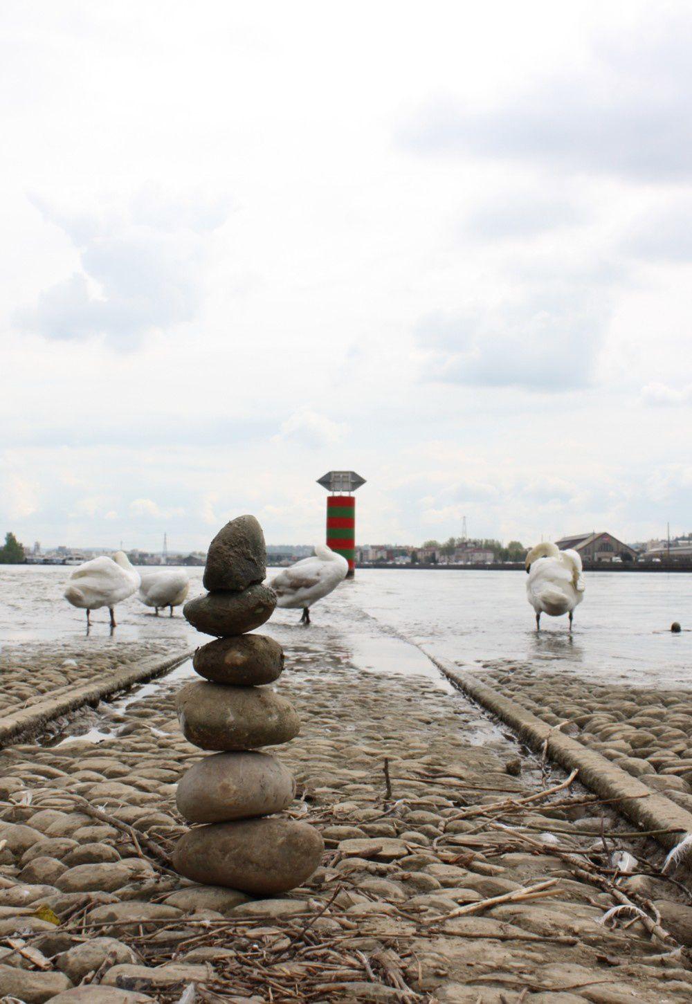 la Saône et le Rhône