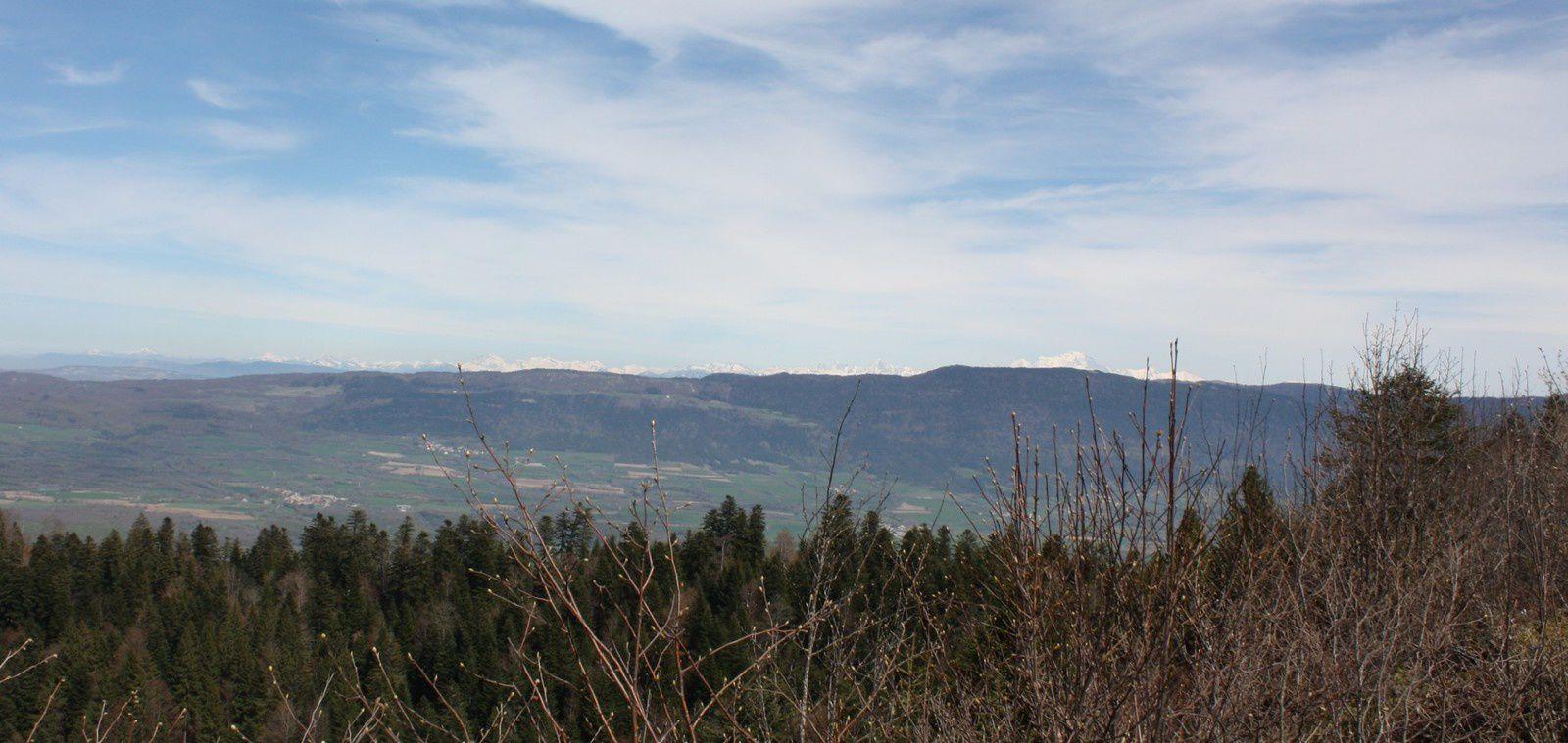 à l'horizon la chaine du Mont Blanc