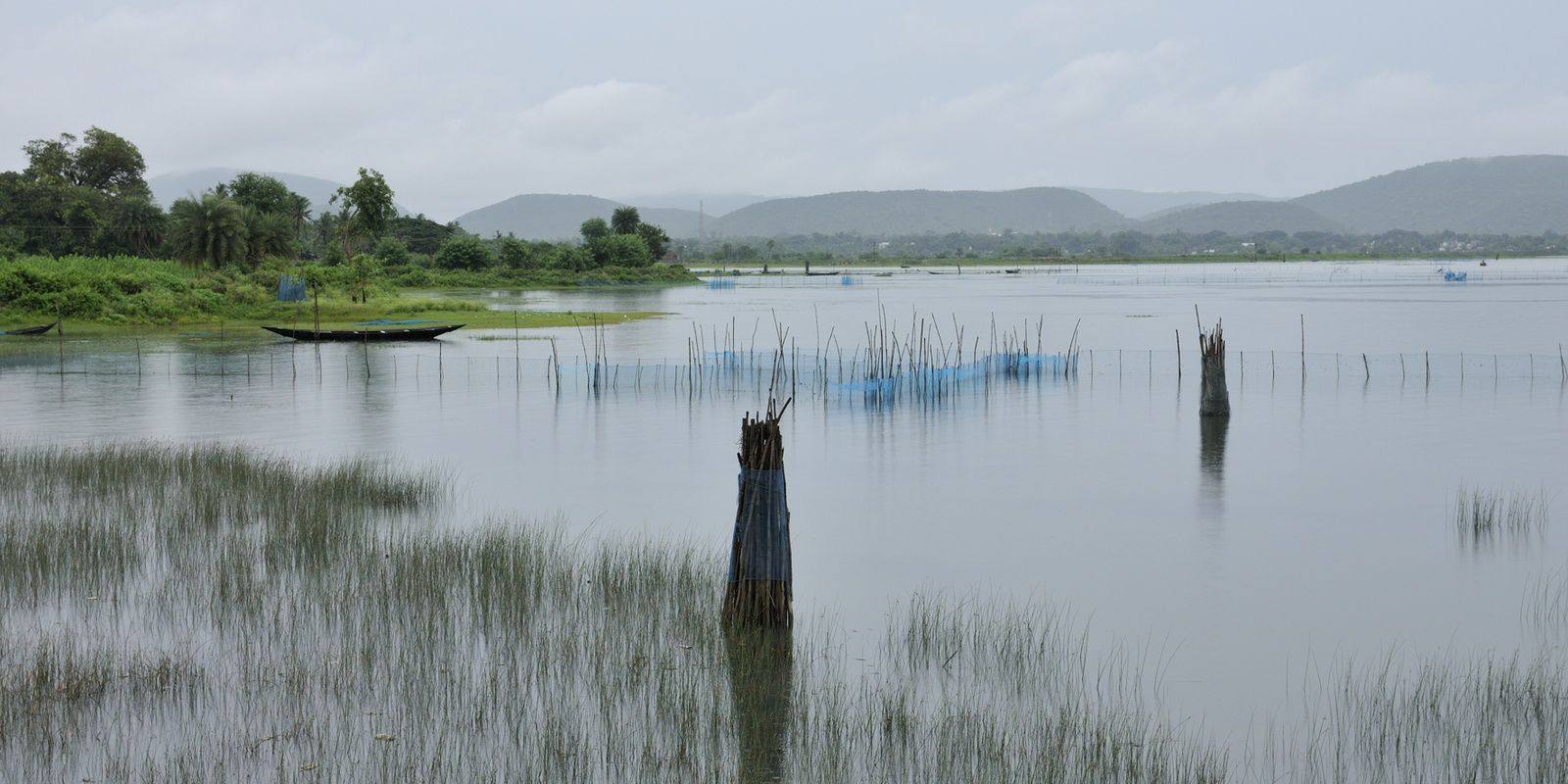 Chilika Lake - India - juil.18