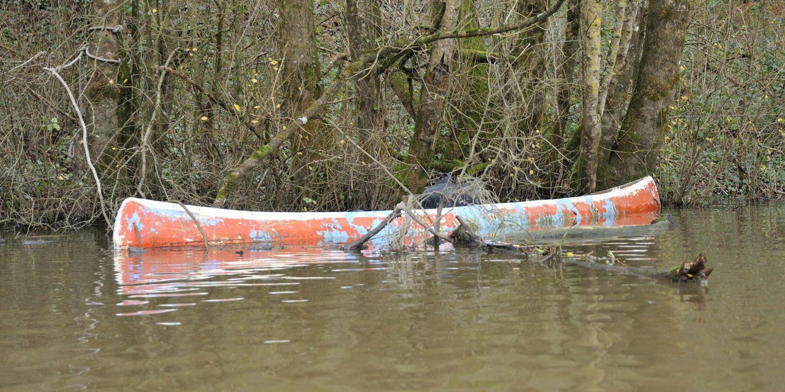 les rats en kayak bois sur la Blanche - sortie de noël le 14 décembre