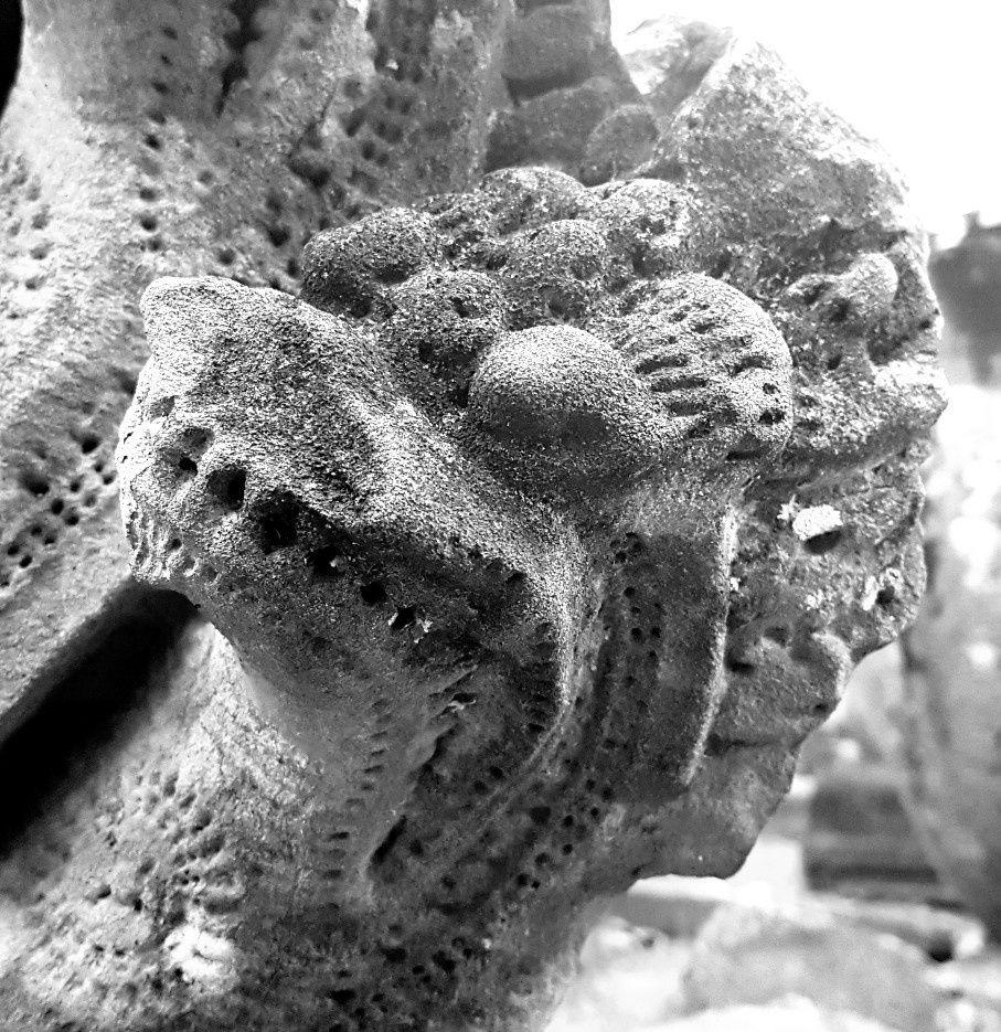 Les mythiques temples d'angkor