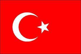 Liberté pour les journalistes turcs ! Le journalisme n'est pas un crime Gazetecilik suç degildir !