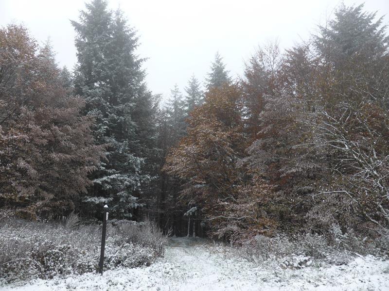Automne...de l'Alsace à la bretagne