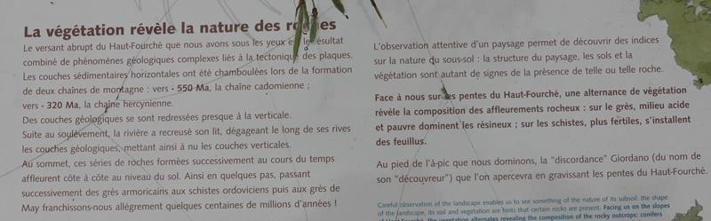 Saint Léonard des Bois