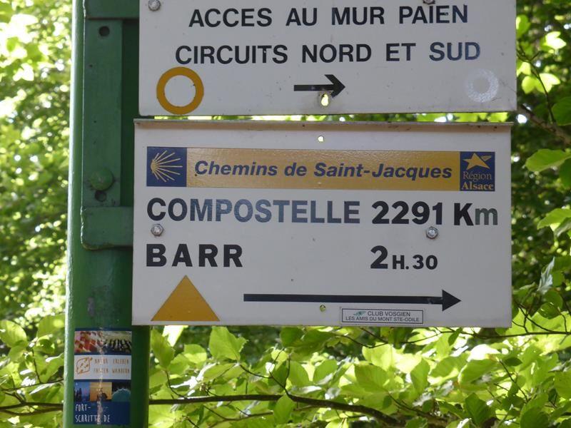 Balade au Mont Saint Odile