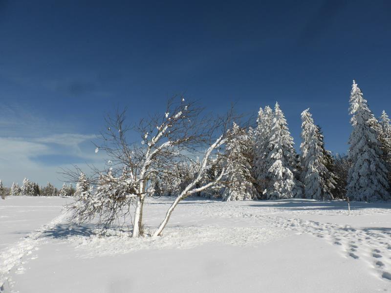 Et maintenant...la neige !