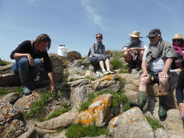 Escapade dans le Morbihan  Jour 5 : les algues...