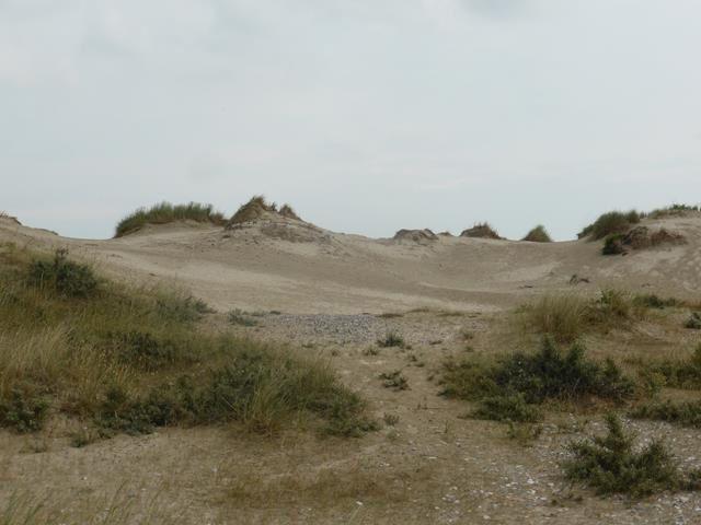 Baie de Somme 2... Le Hourdel