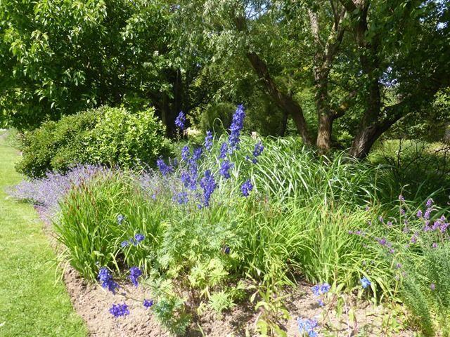 Baie de Somme 9... les jardins de l'abbaye de Valloires