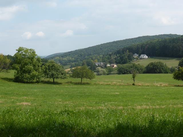 Un début d'été en Alsace...