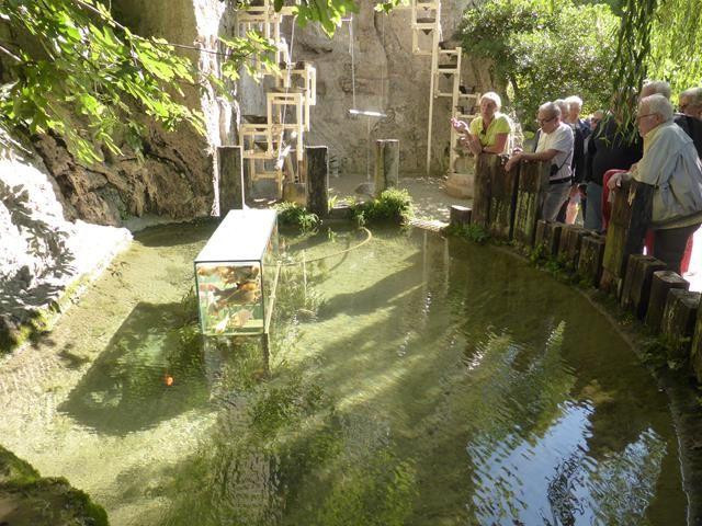 Les jardins des fontaines pétrifiantes à La Sône