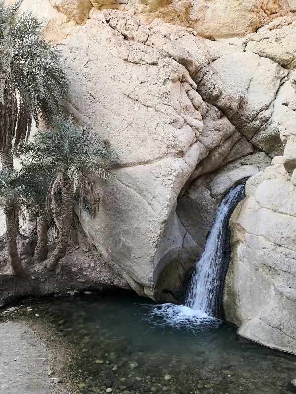 J 9 Les oasis de montagne. ..)