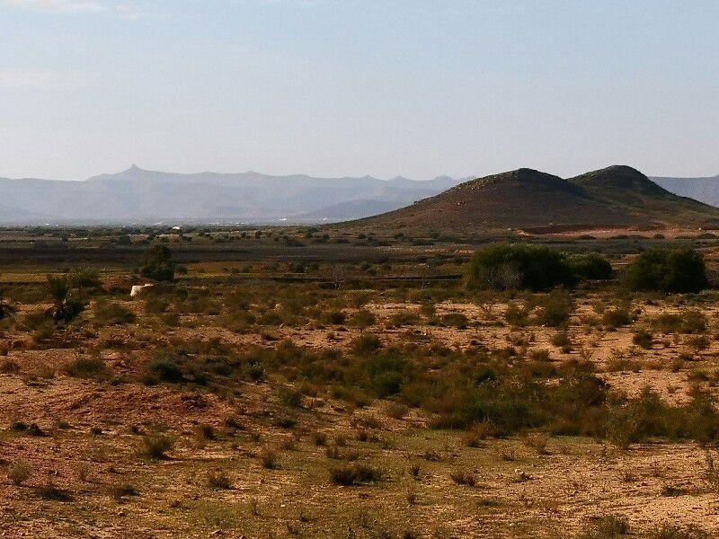 J 13 Retour vers  Djerba. ...