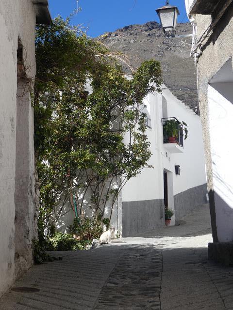 Trevèlez et Pampaneira