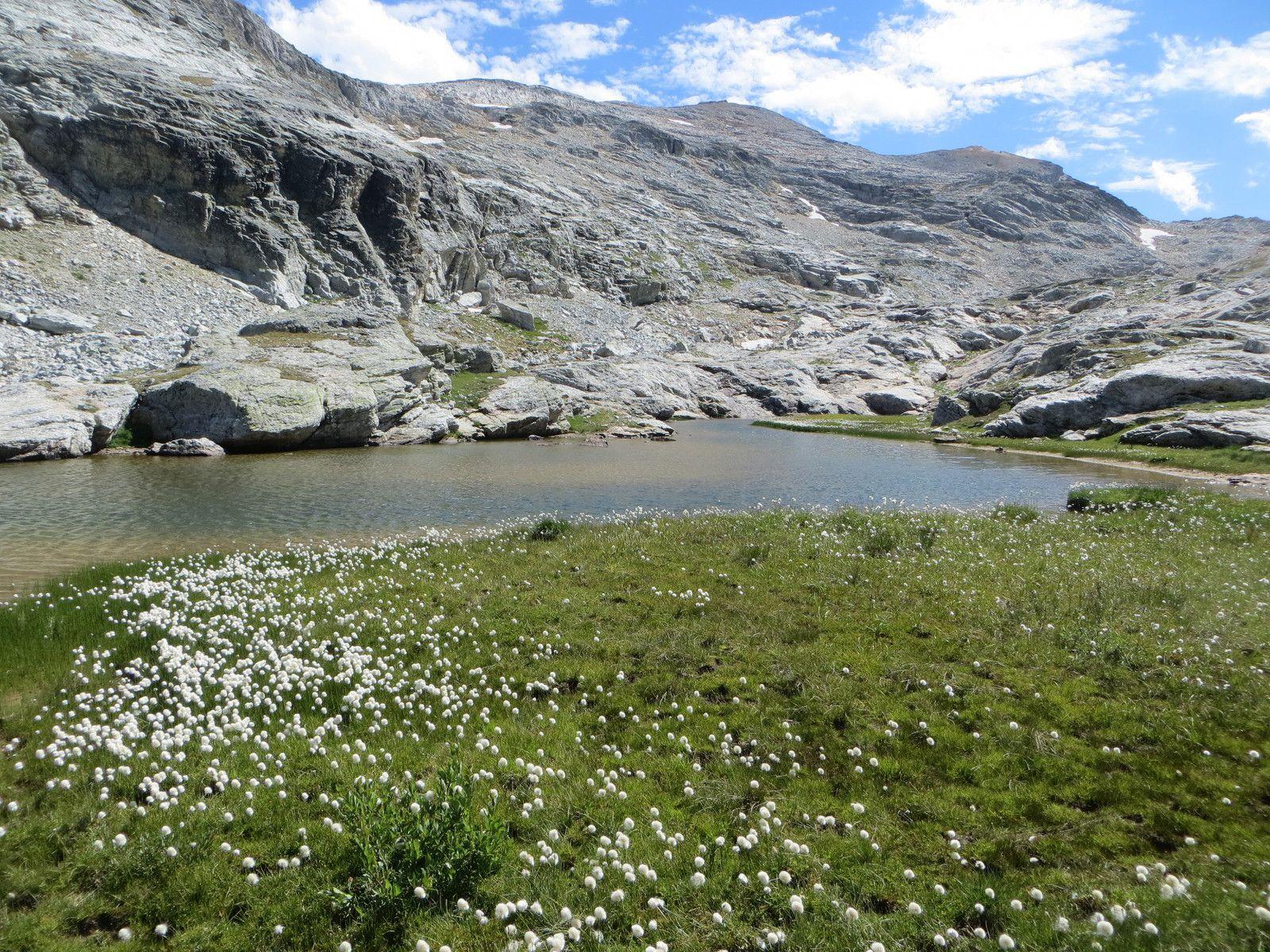 Le lac (2752m) au pied du Grand Bec d'Etache