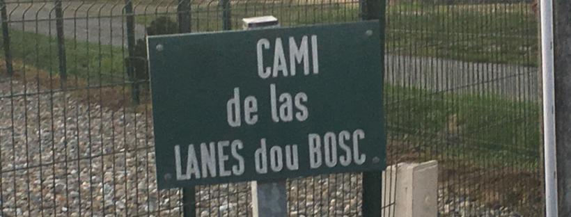 Au Cònsol de Lascasèras, au Maire de Lascazères
