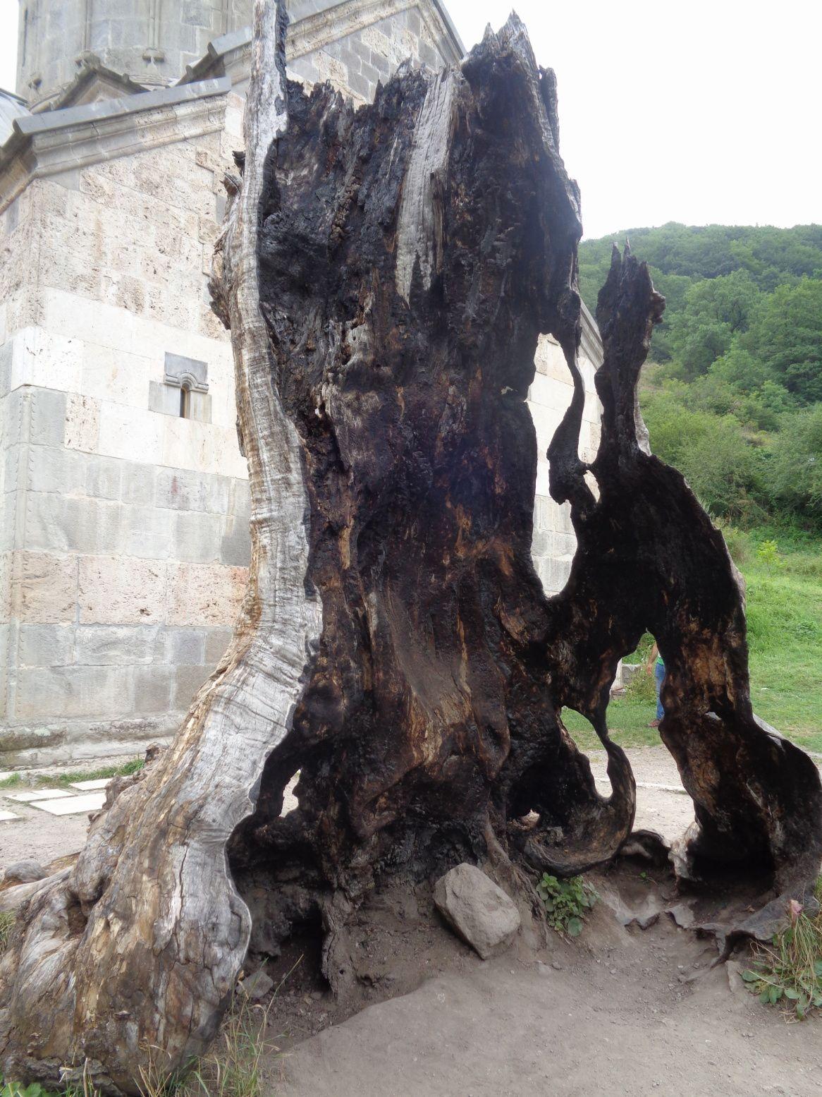 Arménie 2018 - Région du Tavouch : rando, cochons et monastère Haghartsine