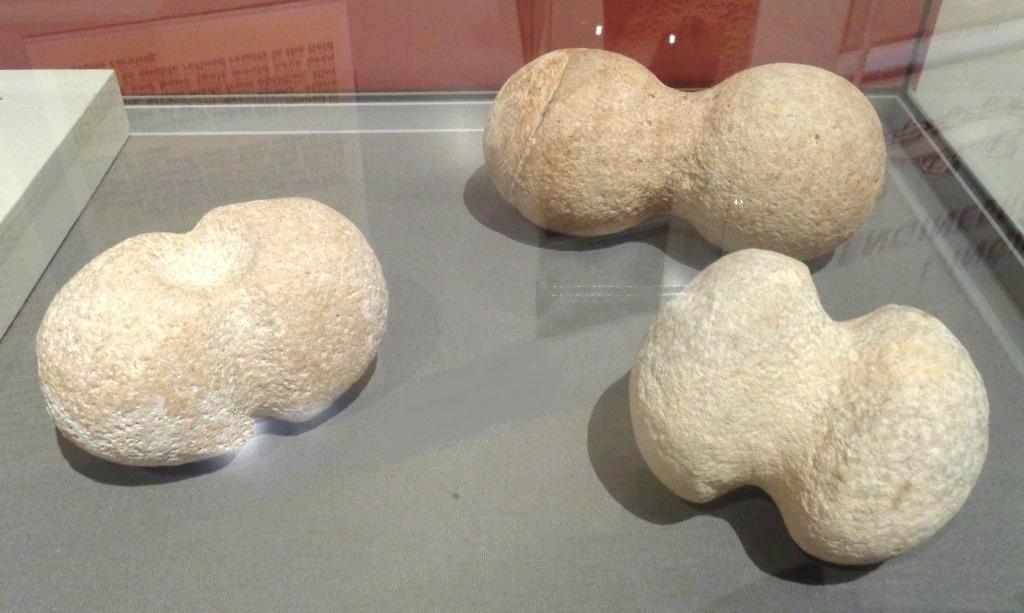 Têtes de marteaux