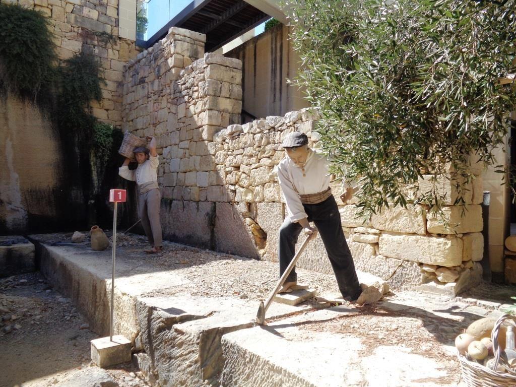 Malte - De la pierre au jardin