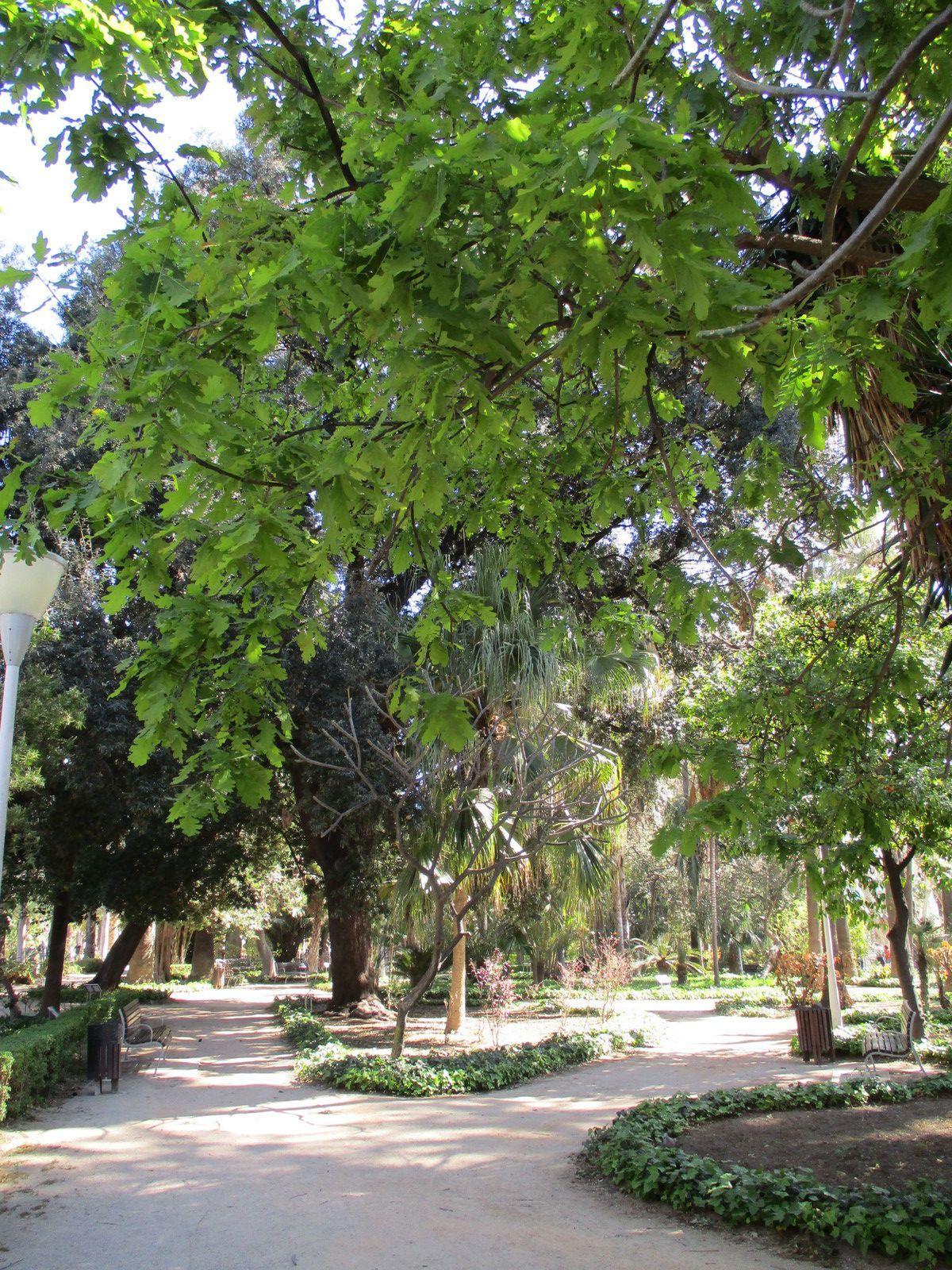 """Màlaga - Le jardin """"Paseo del Parque"""""""