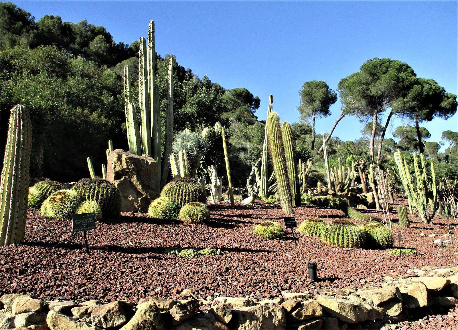 Màlaga - Le jardin botanique et historique de la Concepción