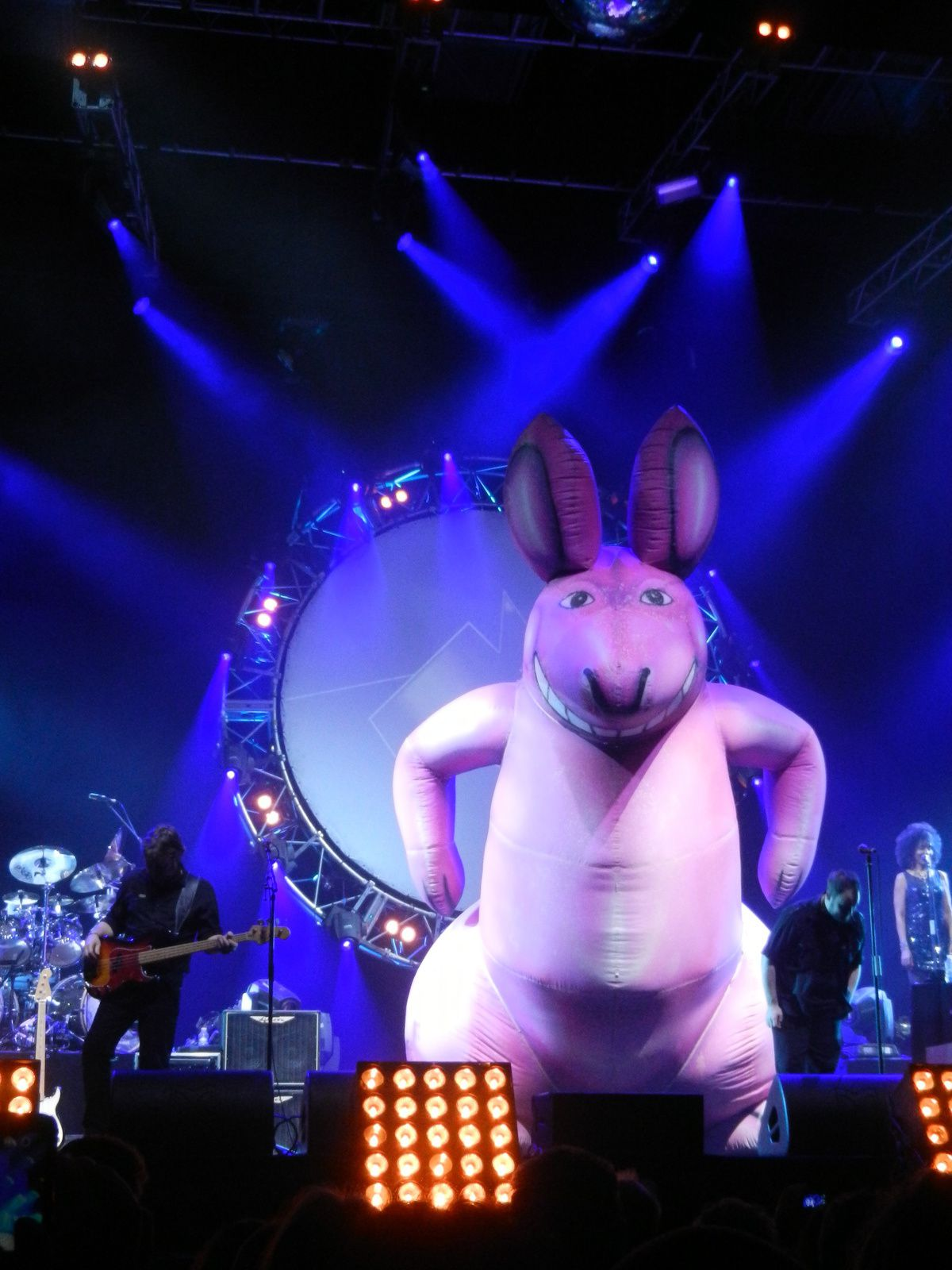 Mercredi 28 janvier 2015 Zénith d'Orléans : The Australian Pink Floyd Show  - Magiclilive is good for you