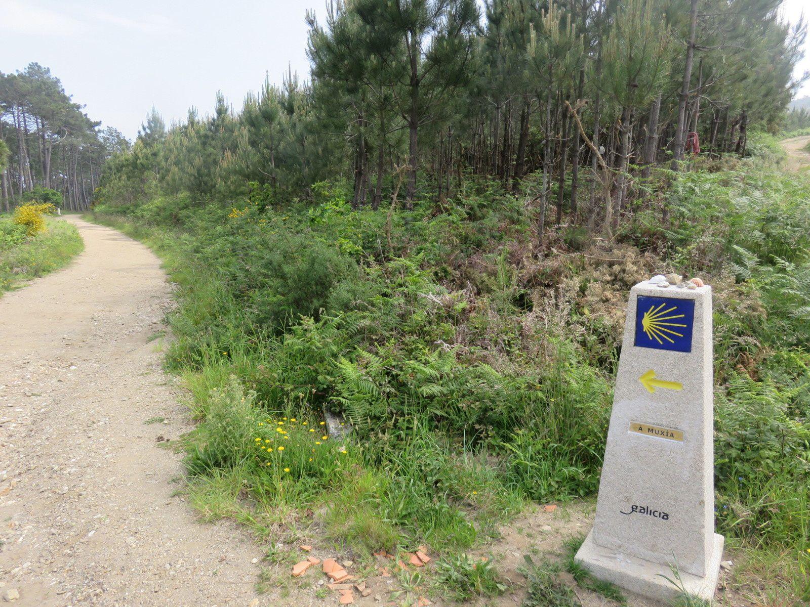 MERCREDI 23 MAI 2018: ETAPE 21: FISTERRA -LIRES : 15 km