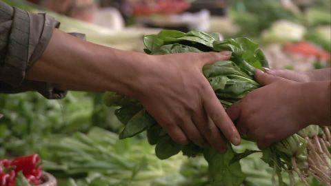 Le Bio, le végétarien une autre façon de bien manger!