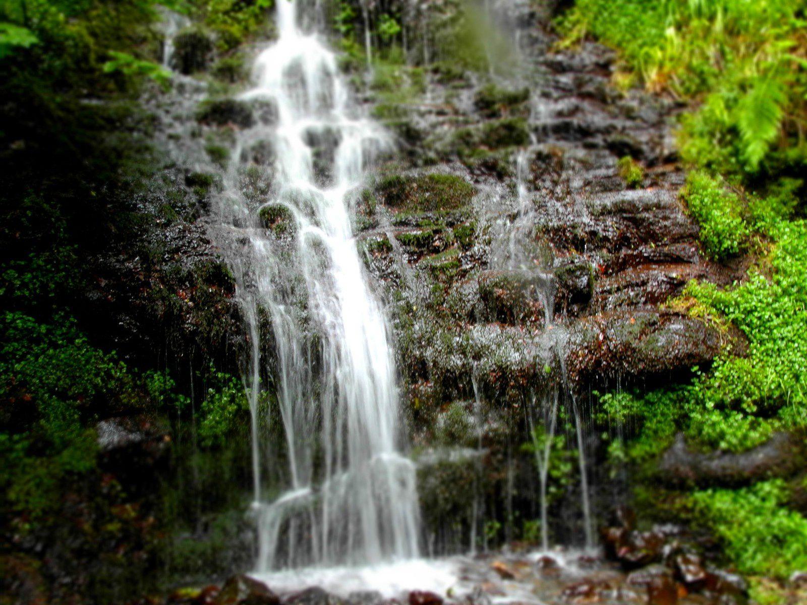 Cascade sur le Plateau de Charlannes à La Bourboule