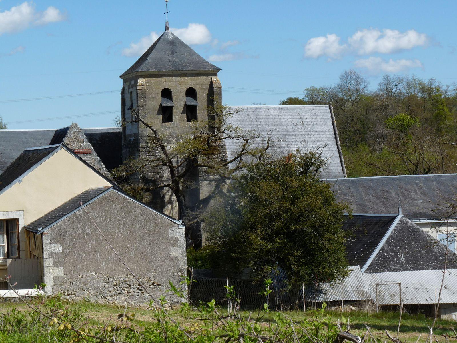 Demande de classement comme arbre remarquable pour le Chêne de l'église de Cheille.(37)