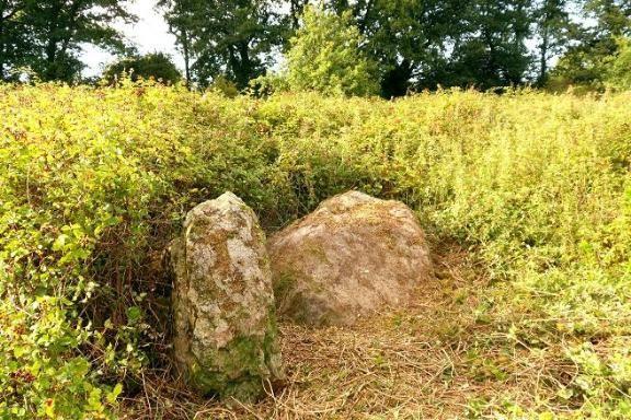 Les Pierres de la Villotin . vestiges mégalithiques
