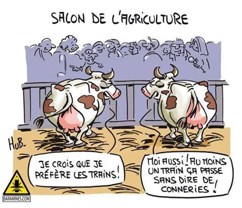 Paroles de vaches au Salon de l'Agriculture 2017