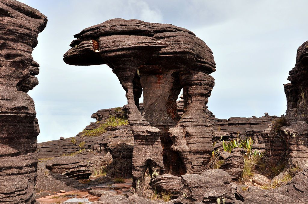 Formations de pierre au sommet du mont roraima  By Paolo Costa Baldi - Own work, CC BY-SA 3.0, https://commons.wikimedia.org/w/index.php?curid=17032743