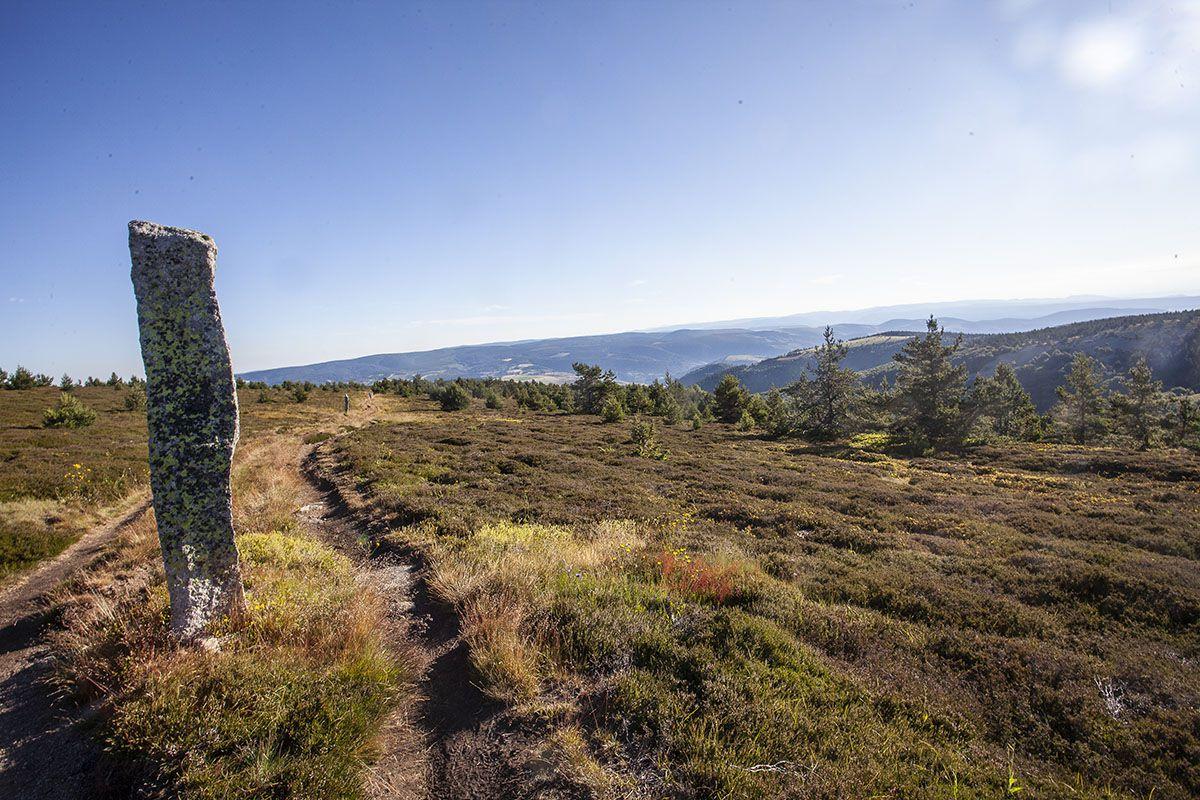 En montant vers le Mont Lozère (10 km de montée)