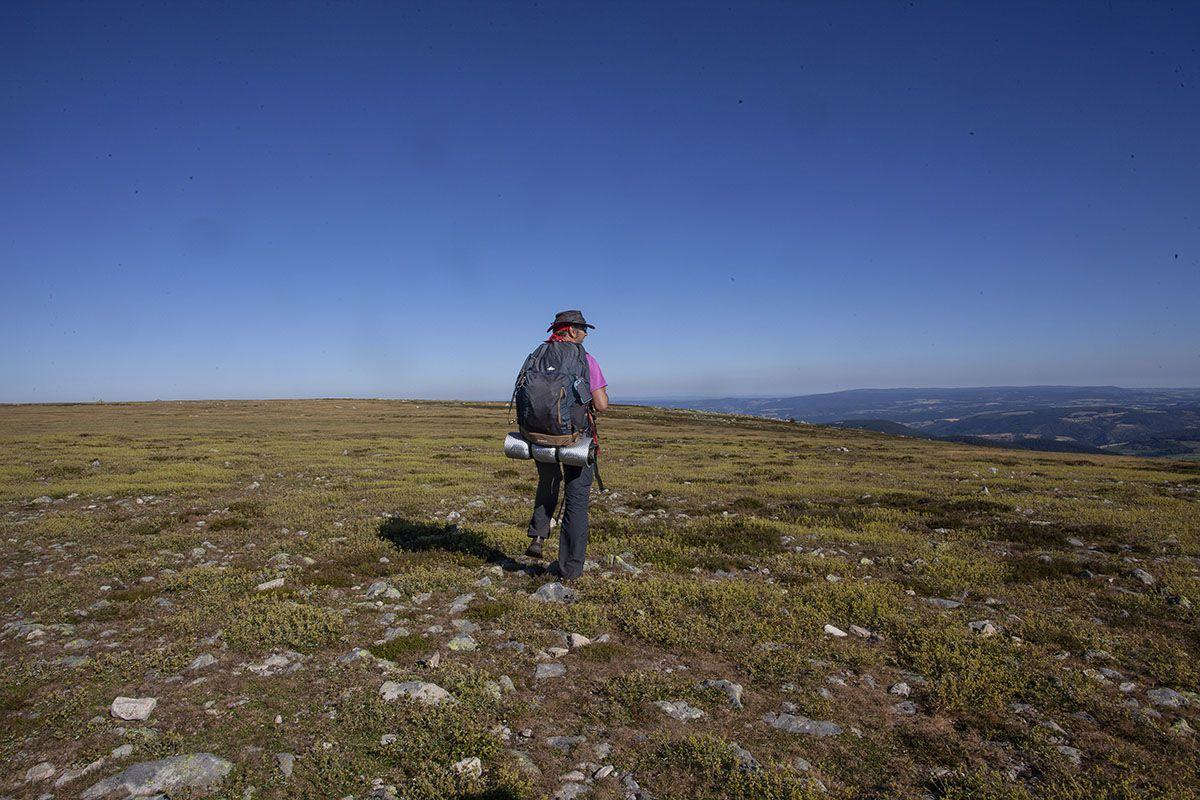Moment intense d'émotion devant la majesté de cet espace immense au sommet de Finiels (1699m) point culminant du Mont Lozère. Arrivé tôt le matin j'ai pu respirer fort cet instant. C'est dans des lieux comme ça que je ressens le plus fort la liberté.