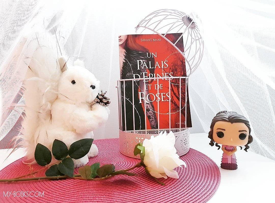 Un Palais d'Épines et de Roses, tome 1 - Sarah J. Maas