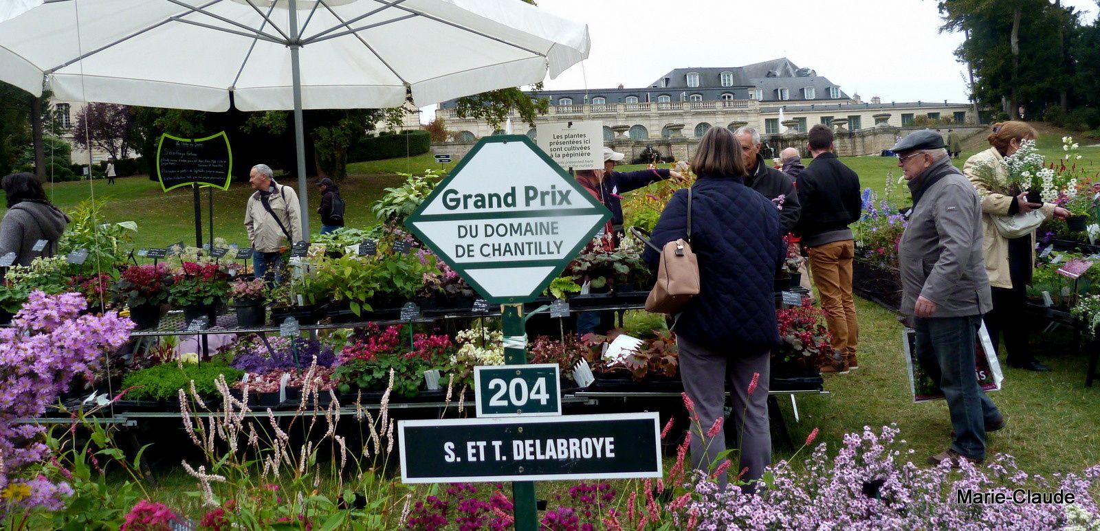 Le grand prix du domaine de Chantilly, excusez du peu !...